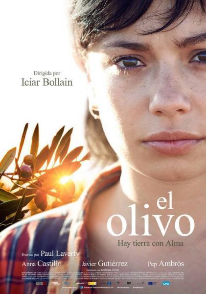 Cine en la playa: El olivo