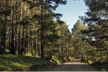 Chodos erwartet Sie mit 1001 Abenteuer im III Aplec del Penyagolosa