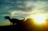 dinosaurios en la Comunitat Valenciana 3