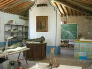 Aula De Recuperació Paleontològica