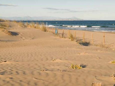 Playa del Campo / Camp