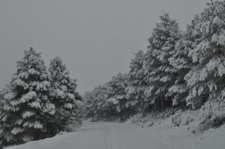 En busca de nieve en la Comunitat Valenciana